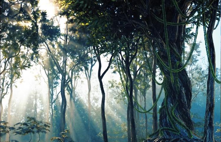 OC室外大场景教程:阳光下的老树盘根